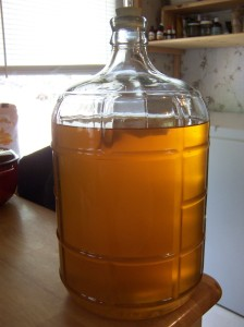 Racked mead, with a spice packet floating at the top. Normally I rack into 1 gallon jugs, but all my jugs are full at the moment so I used a spare carboy.