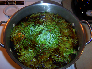 Spruce tips in with the chaga decoction for the last few minutes.