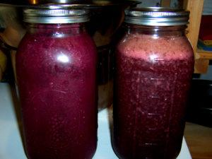 Two half-gallon jars filled with fresh elderberry juice.